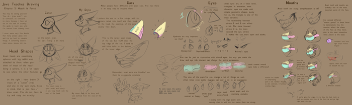 How the heck do avali work?(Pt.1: Heads and Faces) by Javenchi