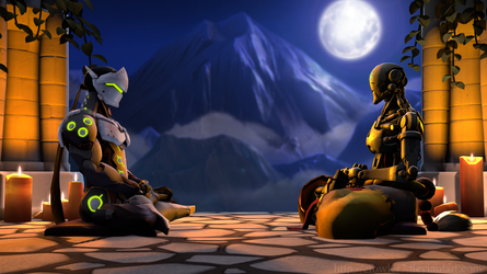 Overwatch -  Student and the Master by cfowler7-SFM