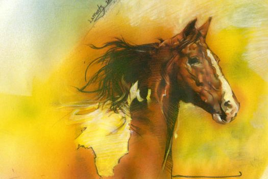 Paint Horse by JeffLafferty