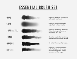 Essential Brush Set by DjamilaKnopf