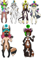 adopts open by kimerii