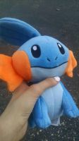 GUYS I BOUGHT A MUDKIP by MeowMix72