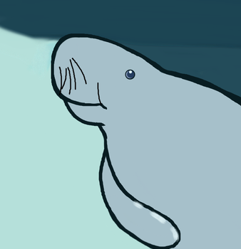 Manatee Awareness Month by Moonstone27