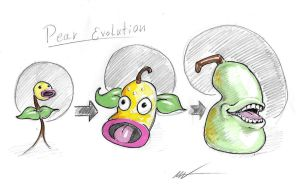 Pear Evolution by zookeeper02