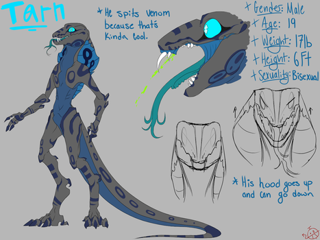 (Commission) Tarn Reference Sheet by SubVisser-MAG-1042