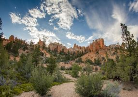 Bryce Canyon National Park by FabulaPhoto