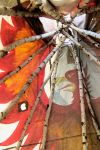 Looking Up on the Inside of a Tipi 8/16/14 5:31 by Crigger