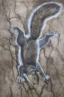 Squirrel Down the Tree by HouseofChabrier