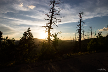 Dixie National Forest - Utah USA by Philip25