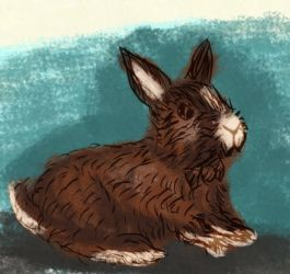 Bani the Bunny by CarbonF