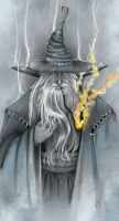 +Gandalf+ by Vegetka