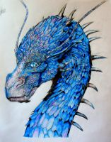Saphira - The Inheritance Cycle by nath2897