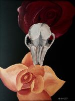 Skull and Roses  by kdrmickey