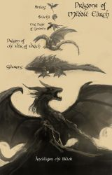 Dragons of Middle Earth by RaikohIllust