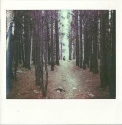 Empty by InstantPhotographer