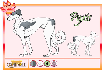 |DoC| Pyxis (Pawn) by FrostFrameArt