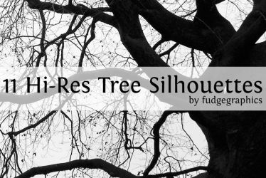 Hi-Res Tree Silhouettes by fudgegraphics