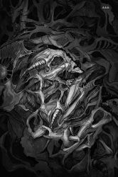 Skull art (black and white) by ViLebedeva