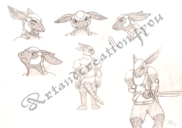Armadillo Knight - Gallan concept art by Artandcreation4you