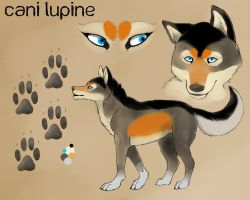 New Cani Lupine ref by CaniLupine