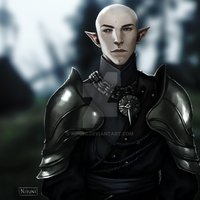 Solas in Inquisition armor by nipuni