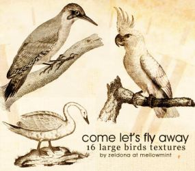 let's fly away - bird texures by mellowmint