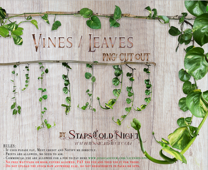 Vines leaves by StarsColdNight by StarsColdNight