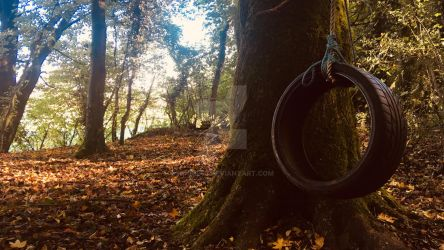 Tire swing by HJGB246