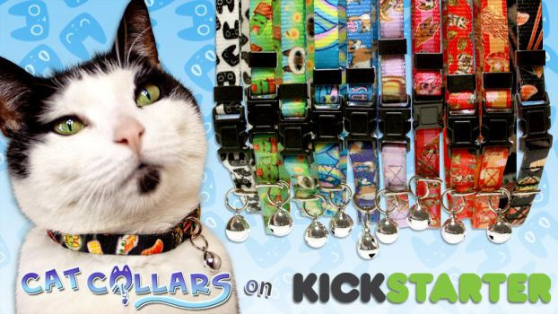 Cat Collars with PURRsonality on Kickstarter! by Spoonful0fcats