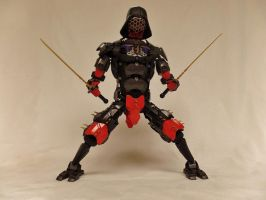 Darth Musashi: Interstellar Samurai by chesterdiggins