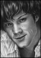 Jared Padalecki by Zindy