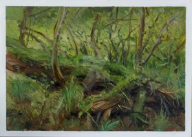 09-Landscape-Nature-Oil Painting by Csaba Tibor Pa by C5aba