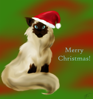 Christmas Cat by Splashie