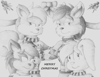 Merry Christmas 2016 by AnsLOD