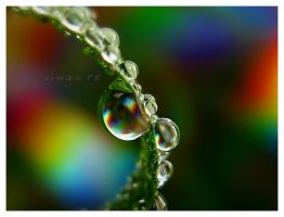 my colorful droplets 5 by sinanTR