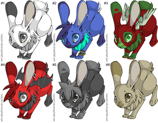 Bunny adopts by careas