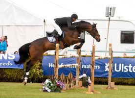 Jumping stock 54 by Kennelwood-Stock