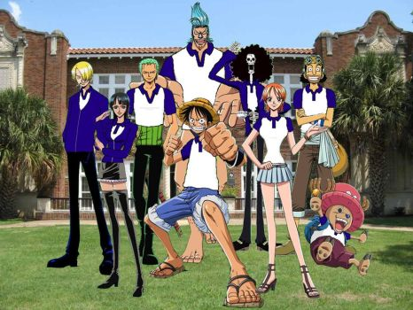 Straw Hat Pirates School Life by ferrnich