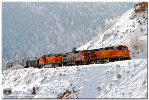 The Polar Express by trevg