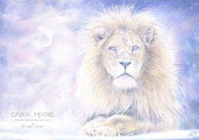 The Winter Lion by Carol-Moore