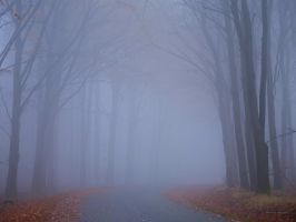 Foggy at the country road by roisabborrar