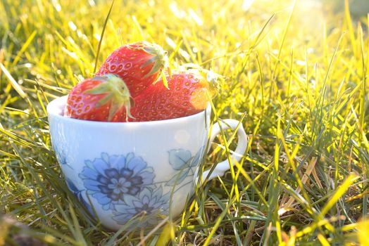 Delicious spring strawberries by MelieEinaleM