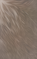 Fur tests - Stock by Bezrail