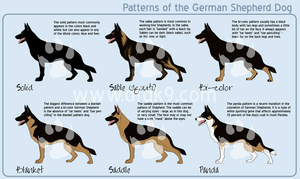 German Shepherd Patterns by MauserGirl
