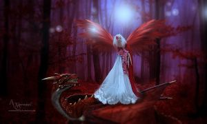 The angel and dragon by annemaria48