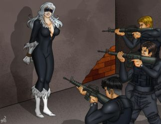 Is This the Untimely End of the BlackCat? by Bowen12a