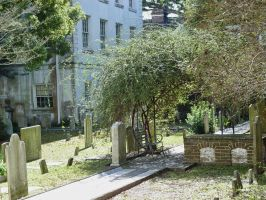 Graveyard in a Courtyard by ce3Design