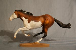 Custom Breyer Smarty Jones - Bay Splash by Izzadorable