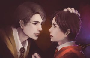 AU_Cedric + Harry by woshibbdou