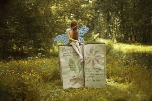 Fairy tale comes to life by chervona